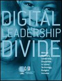 Digital Leadership Divide